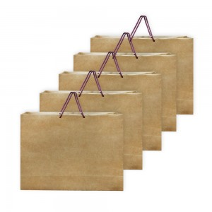 Comet Busters Brown Eco Friendly Multipurpose Paper Bags (Size -15 x 12 x 4 inches) (Pack of 5)