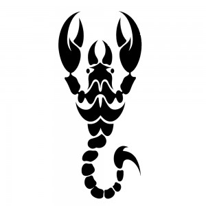 Comet Busters Black Arm Band/Back Temporary Water Tattoo Sticker (BJ169)