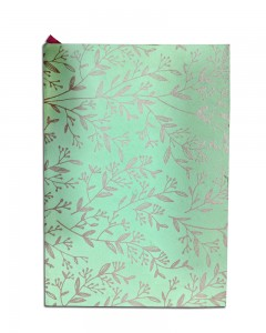 Comet Busters Beautiful Printed Green Notebook Diary