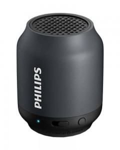 Philips BT50G/00 2 W Portable Bluetooth Speaker  | Black, Mono Channel