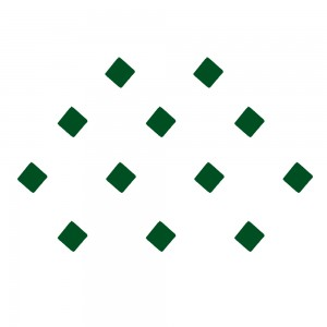 Comet Busters Green Square Daily wear Bindis (4mm) (BIN1197)